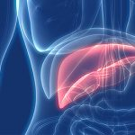 Are Hepatitis B and C curable?