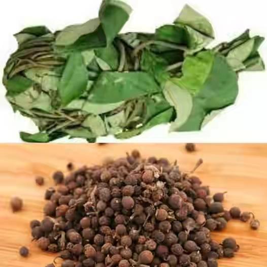 Uziza leafs and seeds