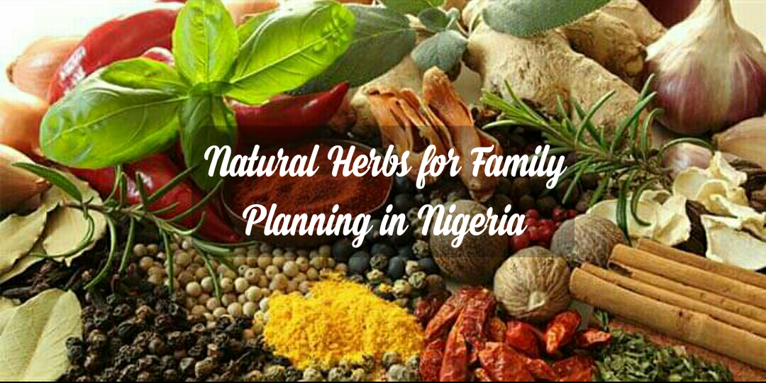 Natural Herbs for Family Planning in Nigeria
