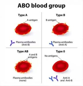 Most common blood group in Nigeria + Rarest blood group in Nigeria