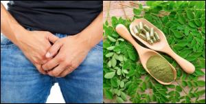 Can Moringa seed cure gonorrhea?