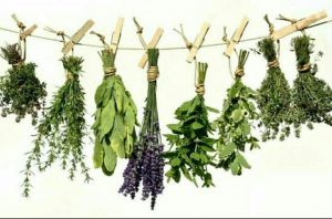 Nigerian herbs that boost testosterone