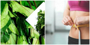 How to use Ugu leaf/Ugwu juice for weight loss.