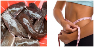 Is catfish good for weight loss?