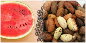 What is the work of bitter kola and watermelon seed?
